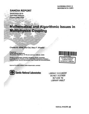 Primary view of object titled 'Mathematical and algorithmic issues in multiphysics coupling.'.