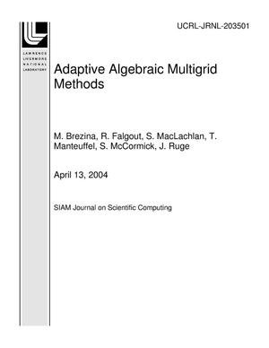 Primary view of object titled 'Adaptive Algebraic Multigrid Methods'.
