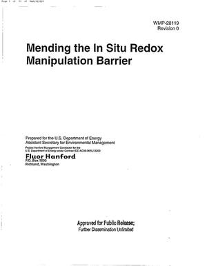 Primary view of object titled 'MENDING THE IN SITU MANIPULATION BARRIER'.