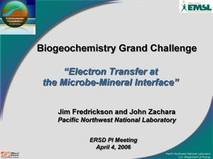 Primary view of object titled 'Biogeochemistry Grand Challenge: Electron Transfer at the Microbe-Mineral Interface'.