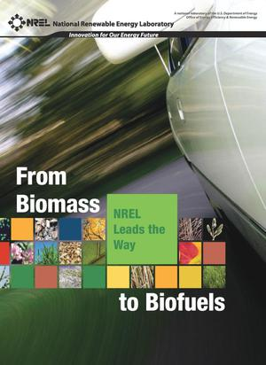 Primary view of object titled 'From Biomass to Biofuels: NREL Leads the Way'.