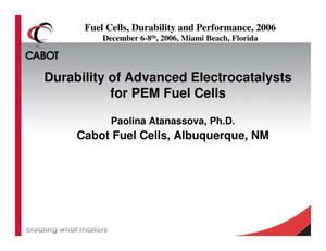 Primary view of object titled 'Durability of Advanced Electrocatalysts for PEM Fuel Cells'.