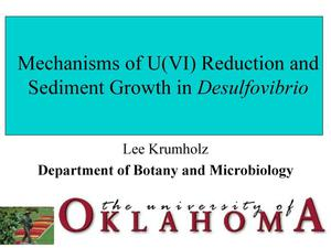Primary view of object titled 'Mechanisms of U(VI) Reduction and Sediment Growth in Desulfovibrio'.