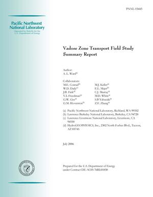 Primary view of object titled 'Vadose Zone Transport Field Study: Summary Report'.