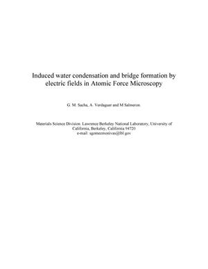 Primary view of object titled 'Induced water condensation and bridge formation by electric fieldsin Atomic Force Microscopy'.