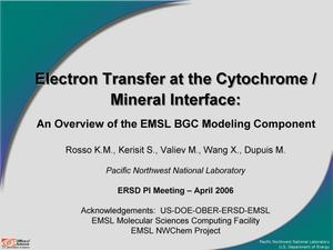 Primary view of object titled 'Electron Transfer at the Cytochrome / Mineral Interface: An Overview of the EMSL BGC Modeling Component'.