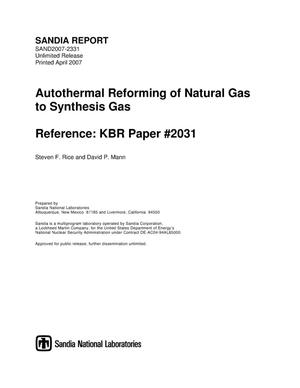 Primary view of object titled 'Autothermal Reforming of Natural Gas to Synthesis Gas'.