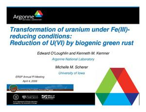 Primary view of object titled 'Transformation of uranium under Fe(III)-reducing conditions: Reduction of U(VI) by biogenic green rust'.