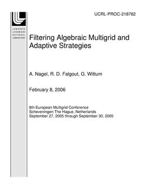 Primary view of object titled 'Filtering Algebraic Multigrid and Adaptive Strategies'.