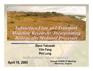 Primary view of object titled 'Subsurface Flow and Transport Modeling Research: Incorporating Biologically Mediated Processes'.