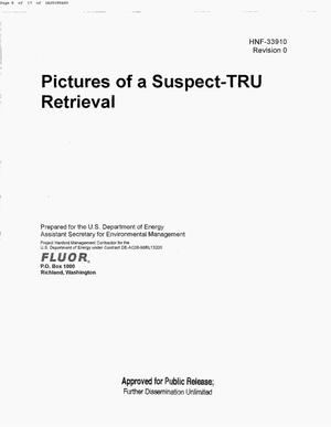 Primary view of object titled 'PICTURES OF A SUSPECT-TRU RETRIEVAL'.
