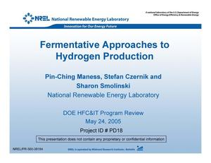 Primary view of object titled 'Fermentative Approaches to Hydrogen Production (Presentation)'.