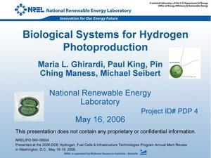 Primary view of object titled 'Biological Systems for Hydrogen Photoproduction (Poster)'.