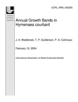 Primary view of object titled 'Annual Growth Bands in Hymenaea courbaril'.