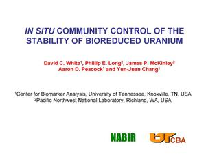 Primary view of object titled 'IN SITU COMMUNITY CONTROL OF THE STABILITY OF BIOREDUCED URANIUM'.