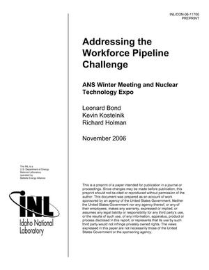 Primary view of object titled 'Addressing the workforce pipeline challenge'.