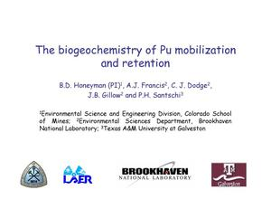 Primary view of object titled 'The biogeochemistry of Pu mobilization and retention'.