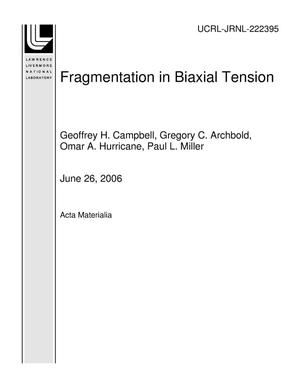 Primary view of object titled 'Fragmentation in Biaxial Tension'.