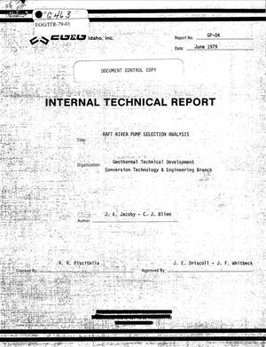 Primary view of object titled 'Internal Technical Report, Raft River Pump Selection Analysis'.