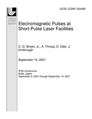 Primary view of object titled 'Electromagnetic Pulses at Short-Pulse Laser Facilities'.