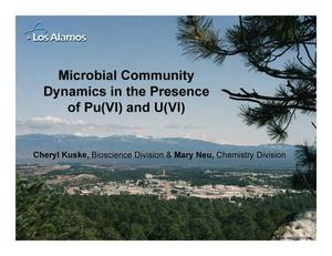 Primary view of object titled 'Microbial CommunityDynamics in the Presenceof Pu(VI) and U(VI)'.
