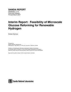 Primary view of object titled 'Interim report:feasibility of microscale glucose reforming for renewable hydrogen.'.
