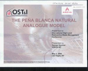 Primary view of object titled 'THE PENA BLANCA NATURAL ANALOGUE MODEL'.