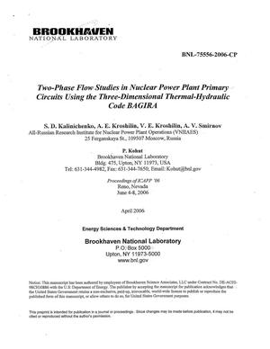 Primary view of object titled 'TWO-PHASE FLOW STUDIES IN NUCLEAR POWER PLANT PRIMARY CIRCUITS USING THE THREE-DIMENSIONAL THERMAL-HYDRAULIC CODE BAGIRA.'.