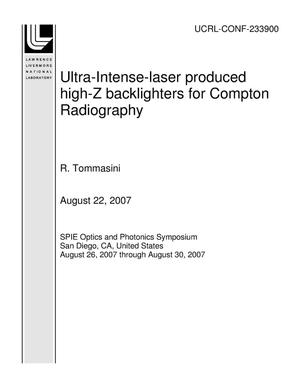 Primary view of object titled 'Ultra-Intense-laser produced high-Z backlighters for Compton Radiography'.