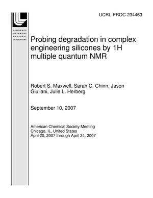 Primary view of object titled 'Probing degradation in complex engineering silicones by 1H multiple quantum NMR'.