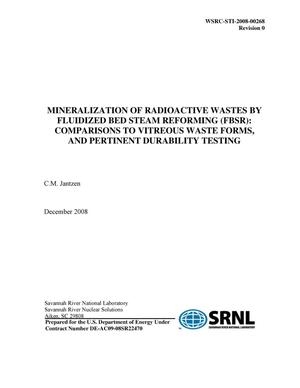 Primary view of object titled 'MINERALIZATION OF RADIOACTIVE WASTES BY FLUIDIZED BED STEAM REFORMING (FBSR): COMPARISONS TO VITREOUS WASTE FORMS, AND PERTINENT DURABILITY TESTING'.