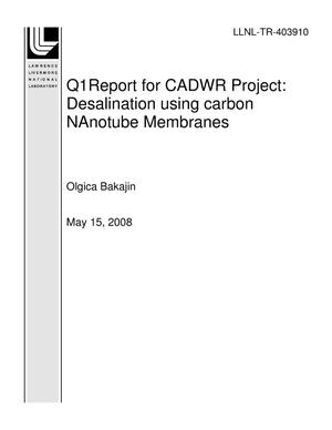 Primary view of object titled 'Q1Report for CADWR Project: Desalination Using Carbon NAnotube Membranes'.