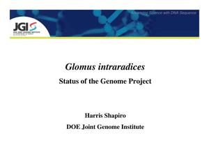 Primary view of object titled 'Glomus intraradices: Status of the Genome Project'.