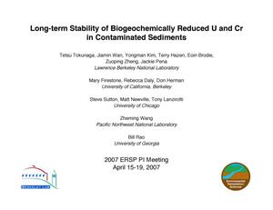 Primary view of object titled 'Long-term Stability of Biogeochemically Reduced U and Cr in Contaminated Sediments'.