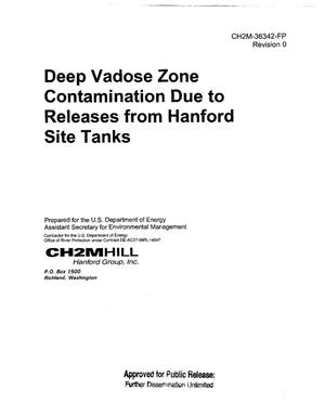 Primary view of object titled 'DEEP VADOSE ZONE CONTAMINATION DUE TO RELEASES FROM HANFORD SITE TANKS'.