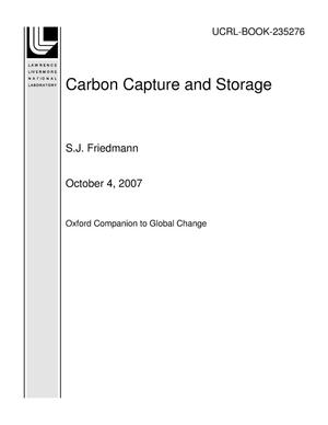 Primary view of object titled 'Carbon Capture and Storage'.