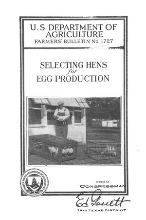 Primary view of object titled 'Selecting hens for egg production.'.