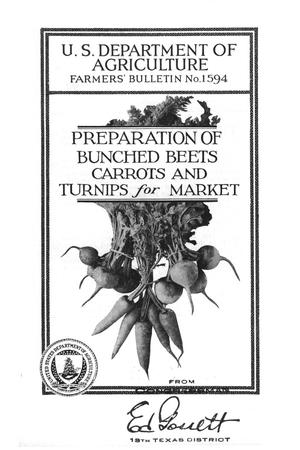 Primary view of object titled 'Preparation of bunched beets, carrots, and turnips for market.'.