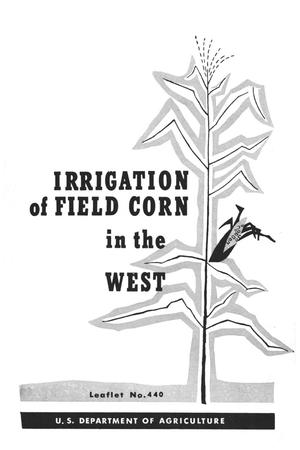 Irrigation of field corn in the West.