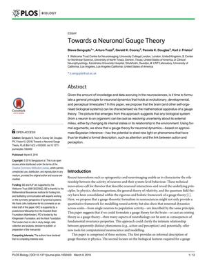 Primary view of object titled 'Towards a Neuronal Gauge Theory'.