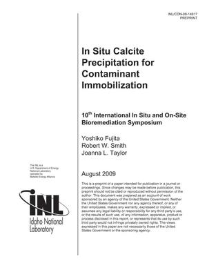 Primary view of object titled 'in situ Calcite Precipitation for Contaminant Immobilization'.