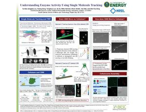 Primary view of object titled 'Understanding Enzyme Activity Using Single Molecule Tracking (Poster)'.