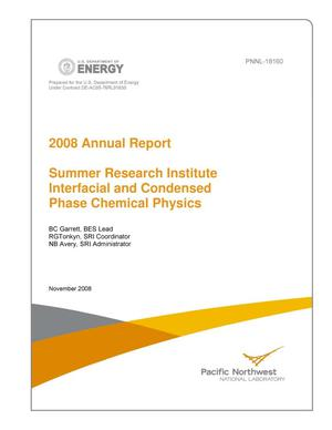 Primary view of object titled '2008 Summer Research Institute Interfacial and Condensed Phase Chemical Physics Annual Report'.