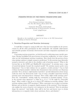 Primary view of object titled 'Perspectives on neutrino telescopes 2009'.