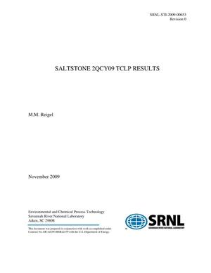 Primary view of object titled 'SALTSTONE 2QCY09 TCLP RESULTS'.