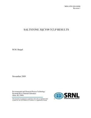 Primary view of object titled 'SALTSTONE 3QCY09 TCLP RESULTS'.
