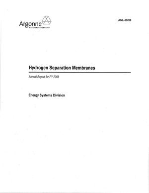 Primary view of object titled 'Hydrogen separation membranes annual report for FY 2008.'.