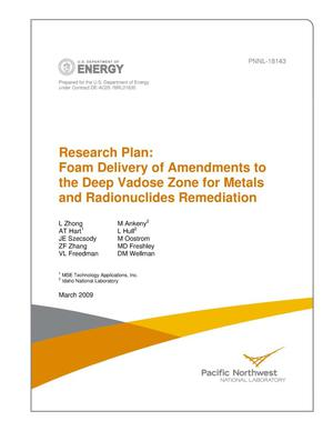 Primary view of object titled 'Research Plan: Foam Delivery of Remedial Amendments to Deep Vadose Zone for Metals and Radionuclides Remediation'.