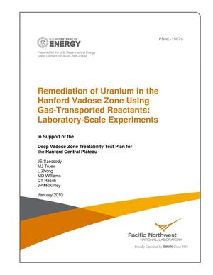 Primary view of object titled 'Remediation of Uranium in the Hanford Vadose Zone Using Gas-Transported Reactants: Laboratory Scale Experiments in Support of the Deep Vadose Zone Treatability Test Plan for the Hanford Central Plateau'.