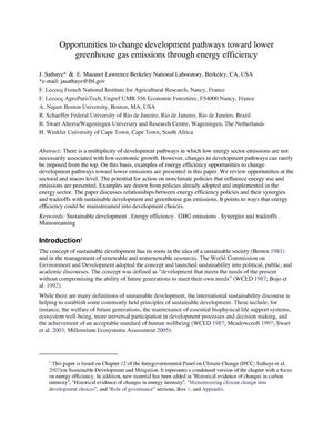 Primary view of object titled 'Opportunities to change development pathways toward lower greenhouse gas emissions through energy efficiency'.